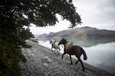 2013_Chile_Patagonien_0823